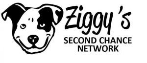 ziggys