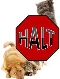 HALT-Logo